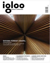 revista Igloo